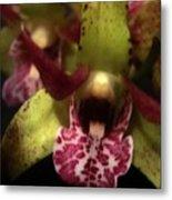 Orchid Lights Metal Print