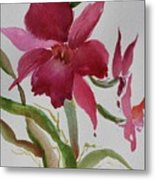 Orchid Morning Metal Print