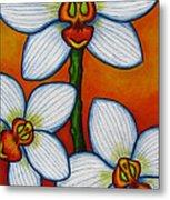 Orchid Oasis Metal Print by Lisa  Lorenz