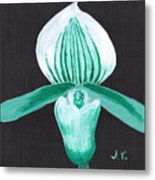 Orchid-paphiopedilum Bob Nagel Metal Print by M Valeriano