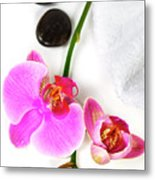 Orchid Spa Composition Metal Print