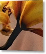 Orchid Yellow Metal Print