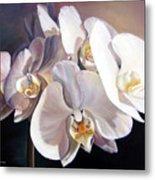 Orchidee Metal Print