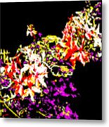 Orchidelia Metal Print by Eikoni Images