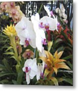 Orchids And Iron Metal Print