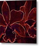 Orchids - For Pele Metal Print