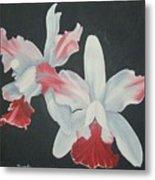 Orchids In Flight Metal Print