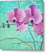 Orchids In Pink Metal Print