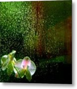 Orchids In The Rain Metal Print