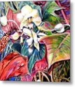 Orchids In White Metal Print