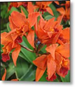 Orchids Vertical Triptych Metal Print