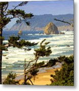 Oregon Coast 15 Metal Print