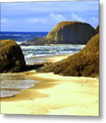Oregon Coast 18 Metal Print