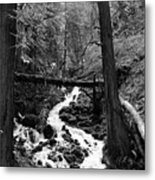 Oregon River Black And White Metal Print