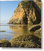 Oregon Seascape Metal Print