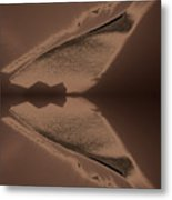 Organic Details Near That Strongly-held Dividing Line 2015 Metal Print by James Warren