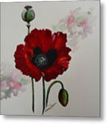 Oriental Poppy Metal Print