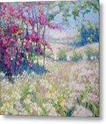 Original Oil Painting - Spring Meadow In Sussex Metal Print