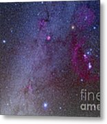 Orion And Canis Major Showing Dog Stars Metal Print