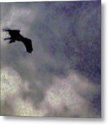 Osprey Silhouette Metal Print
