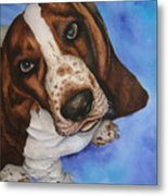 Otis The Basset Hound Metal Print