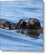 Otter Bliss Metal Print