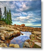 Otter Point Reflections Metal Print