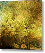 Our Town In Autumn Metal Print