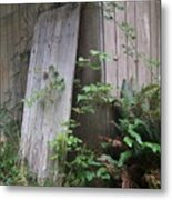 Out Back Metal Print by Angi Parks