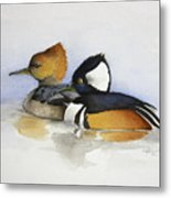 Out For A Swim Metal Print