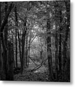 Out From The Darkness Metal Print