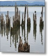 Out In The Bay Metal Print
