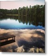 Out In The Open Metal Print