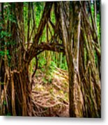 Out Of The Hole And Through The Trees Metal Print