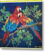 Out On A Limb- Macaws Parrots - Bordered Metal Print