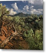 Out On The Mesa 2 Metal Print