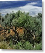 Out On The Mesa 3 Metal Print
