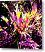 Outburst Metal Print by Eikoni Images