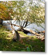 Outdoors Along The Huron River Metal Print