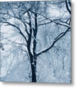 Outside My Window Metal Print