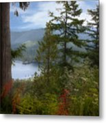 Over Burrard Inlet Metal Print by Barbara  White