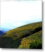 Over Hill And Dale Metal Print