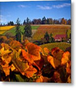 Over The Durant Vineyards Metal Print