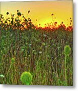 Over The Hill Top Metal Print