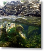 Over Under Honu Metal Print