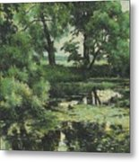 Overgrown Pond Metal Print