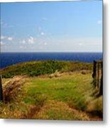 Overlooking Turtle Bay Metal Print
