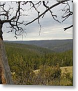 Overseeing The Canyon Metal Print