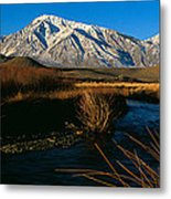 Owens River Valley Bishop Ca Metal Print