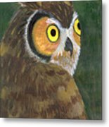 Owl 2009 Metal Print
